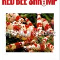 ビーシュリンプ専門情報誌 RED BEE SHRIMP Vol.01