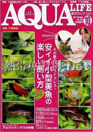 アクアライフ No.387 2011年10月号
