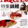 アクアライフ No.400 2012年11月号