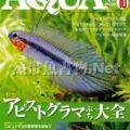 アクアライフ No.411 2013年10月号