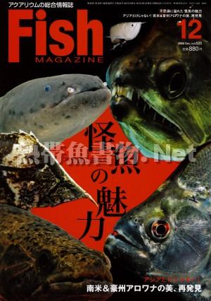 フィッシュマガジン No.525 2009年12月号
